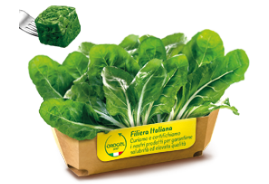 Swiss Chard Cubes (Ribbed Variety)