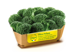 Broccoli Florets (Individually Frozen)