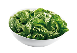 Spinach Leaves IQF